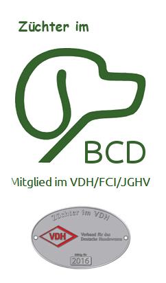 bcd_vdh